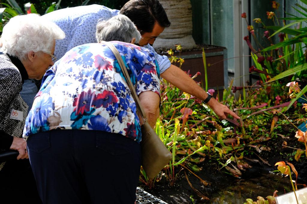 Good Days- Adviesbureau Veiligheid en Handhaving - Botanische tuinen (10)