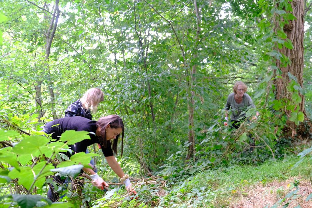 Good Days- Adviesbureau Veiligheid en Handhaving - Botanische tuinen (7)