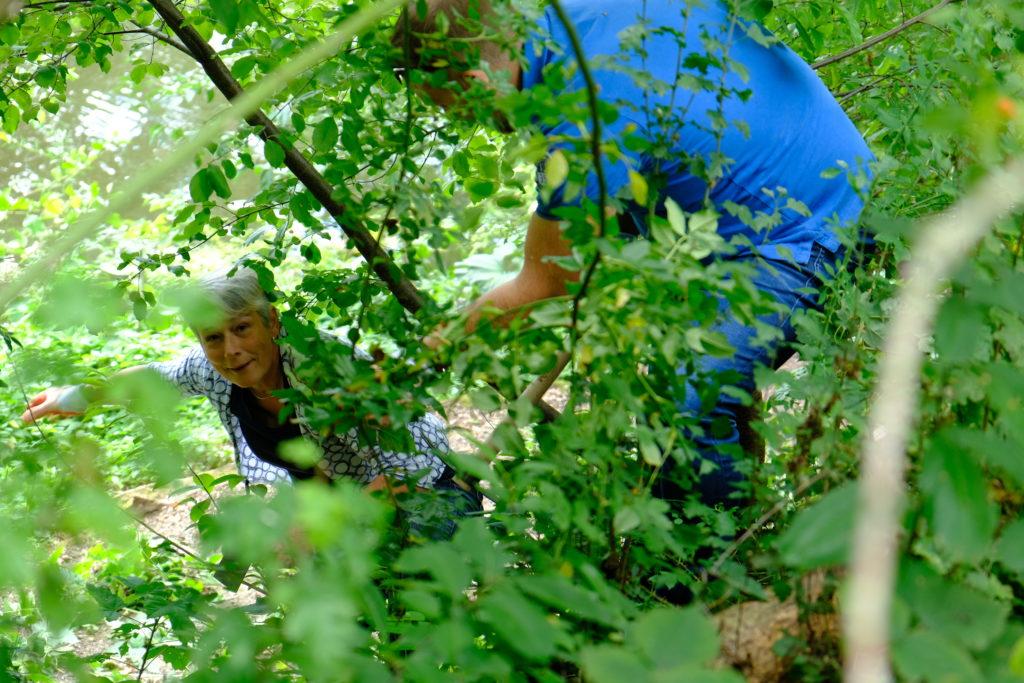 Good Days- Adviesbureau Veiligheid en Handhaving - Botanische tuinen (8)