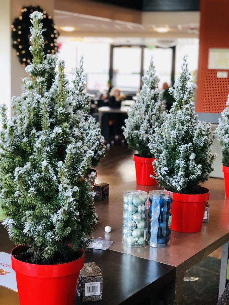 Good Days -stichd kerstboompjes bij Noorderkroon (15)