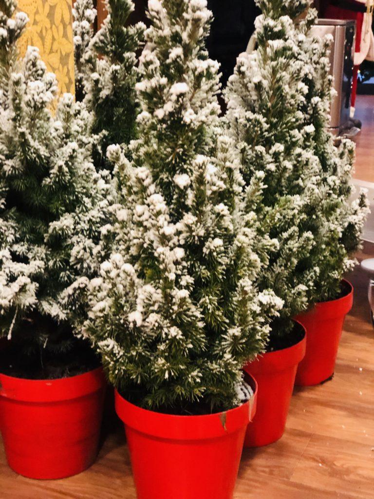 Good Days -stichd kerstboompjes bij Noorderkroon (20)