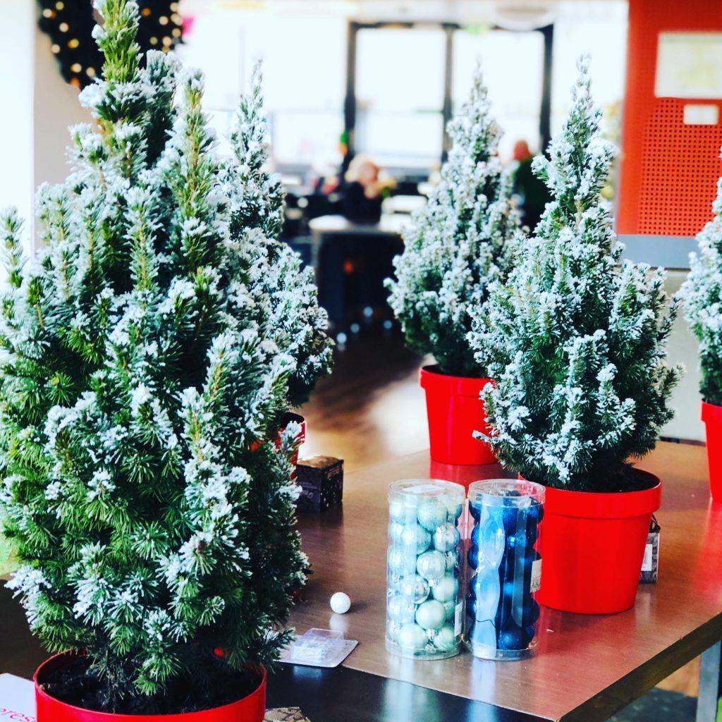 Good Days -stichd kerstboompjes bij Noorderkroon (29)