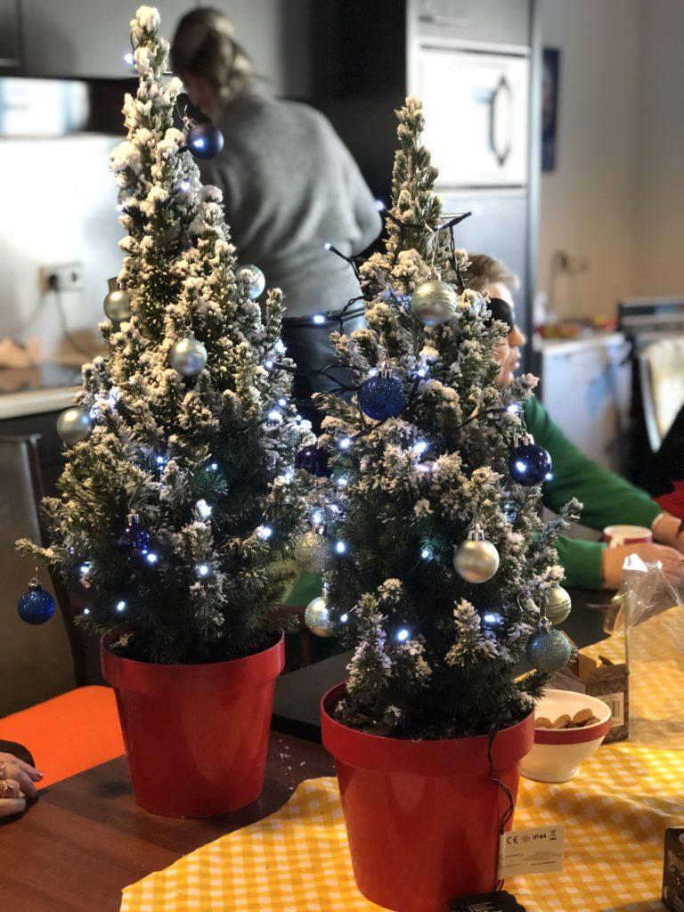 Good Days -stichd kerstboompjes bij Noorderkroon (3)